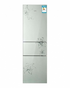 Sampo新宝225GT电冰箱,无霜保鲜,畅享原汁生活