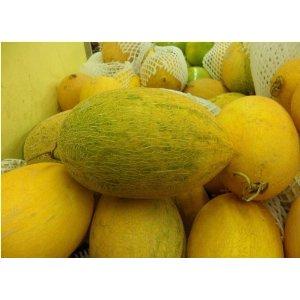Sprout 我要发芽 瓜果种子 水果种子 禾丰早金蜜瓜种子 金黄色皮哈密瓜 椭圆型全网纹 60g/袋 278元