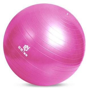 哈他瑜伽球 加厚磨砂防爆健身球安全环保无味美体瑜珈球 65cm优雅粉套装(身高165cm以下)