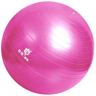 哈他瑜伽球 加厚磨砂防爆健身球安全环保无味美体瑜珈球 75cm优雅粉套装(身高165cm以上)