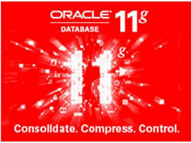 甲骨文 Oracle Database 11g企业版